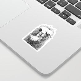 Black and White Alpaca Sticker