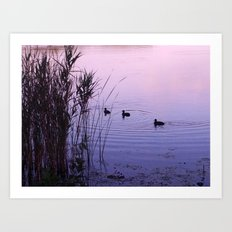 The Lake II Art Print