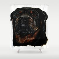 rottweiler Shower Curtains featuring Male Rottweiler by taiche