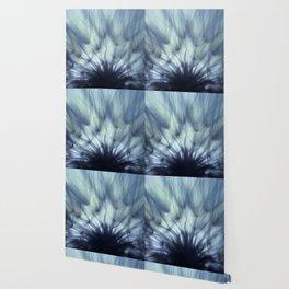 A Dandelion Fan Wallpaper