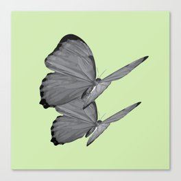 BUTTERFLY SERIES (3) Canvas Print