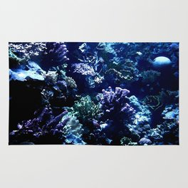 Painted Corals Rug