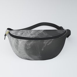 Form Ink No.10 Fanny Pack