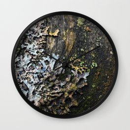 Moss and lichen Wall Clock