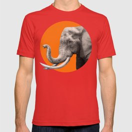 Wild 3 by Eric Fan & Garima Dhawan T-shirt