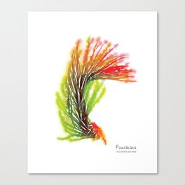 Tillandsia Funckiana Air Plant Watercolors Canvas Print