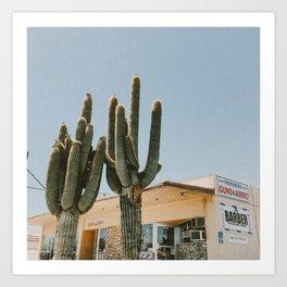 cactus 2 / california desert Art Print
