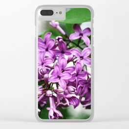 Lilac bushes bloom in the city park of Nalchik. Clear iPhone Case