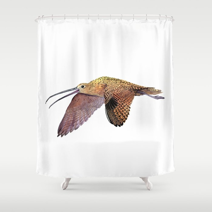 Long-billed Curlew Shower Curtain