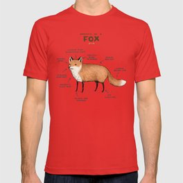 Anatomy of a Fox T-shirt