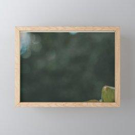 Vining Plant Framed Mini Art Print