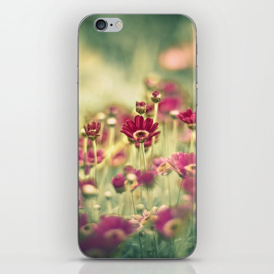 We Grew for You iPhone & iPod Skin