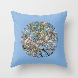 Spring day VI Throw Pillow