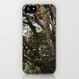 wild forest on the kepler track iPhone Case