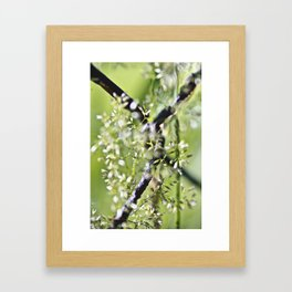 Blades Of Grass On Wire Fence Framed Art Print
