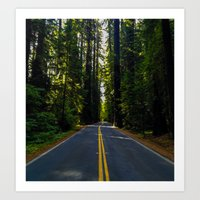 forrest Art Prints featuring Forrest by John Monastero