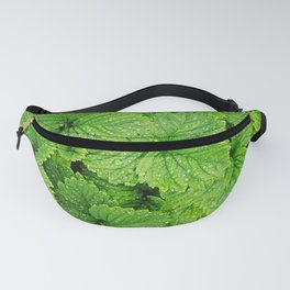 Strawberry leaves after the rain Fanny Pack
