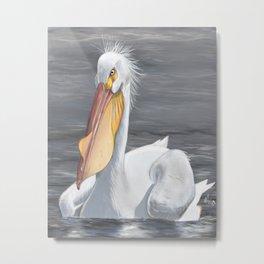 White American Pelican Metal Print