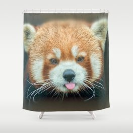 PANDA-RING TO ONE'S TASTE Shower Curtain