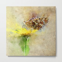 "Orange butterfly ""Boloria selene"" Metal Print"