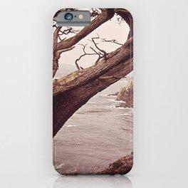ROCKY SEASHORE AND GNARLED TREE NARA 543134 iPhone Case