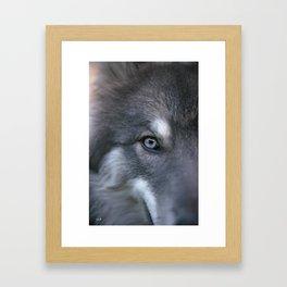 Universe Eye Framed Art Print