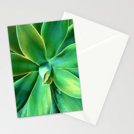 Elegant Sophisticated Succulent Stationery Cards