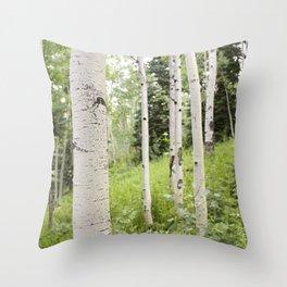 Silverthorne Throw Pillow