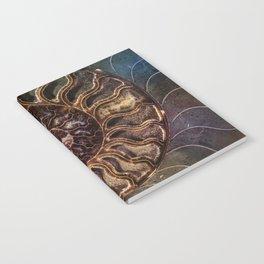An Ancient Shell Notebook