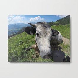Bavarian mountain | cows Metal Print