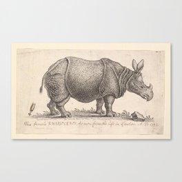 Vintage Rhino Canvas Print