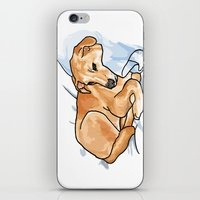 leo iPhone & iPod Skins featuring Leo by Ken Coleman