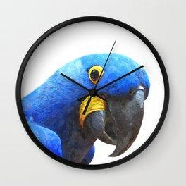 Blue Parrot Portrait Wall Clock