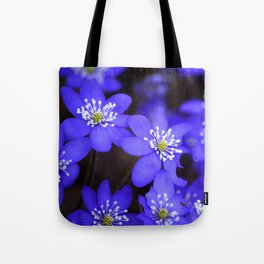First Spring Flowers in Forest Tote Bag