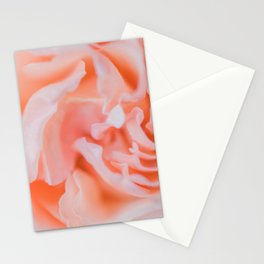 Closeup - Rose Photography Stationery Cards
