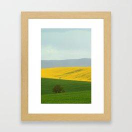 Colza 3 Framed Art Print