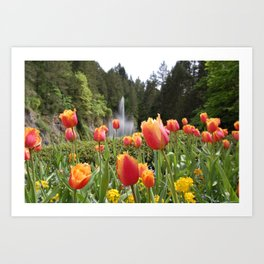 Tulip Bed Art Print
