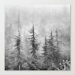 """""""Wilderness"""". Into the foggy mountains Canvas Print"""