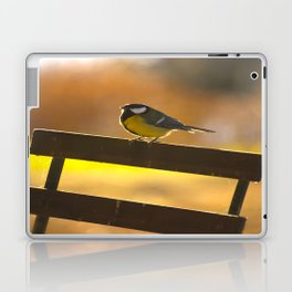 Great Tit On A Chair Laptop & iPad Skin