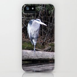 Hangin' Around iPhone Case