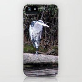 Hangin' Around iPhone Case