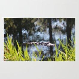 Alligator Moving Along Rug