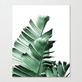 Banana leaf, Plant, Green, Minimal, Trendy decor, Interior, Wall art, Photo Art Print Canvas Print