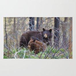 Sow & cub in Jasper National Park   Canada Rug