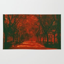 Red afternoon Rug
