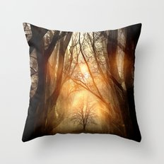 Searching Dreams Lost Throw Pillow