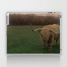 Scottish Highland Steer Laptop & iPad Skin