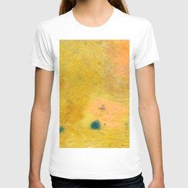 Abstract No. 534 T-shirt
