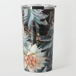 orange succulent Travel Mug