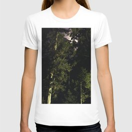 Moon light trees in Okunoin cemetery of Koyasan, Japan T-shirt
